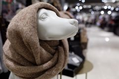 Dummy of dog dressed in snood. Helsinki, Finland - December 9, 2017: Dummy of dog dressed in snood in the Stockmann department store. 2018 is year of the dog by stock photos