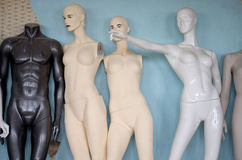 The dummy of mannequin Royalty Free Stock Image