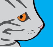 Dumny Profilowy szary kot Obraz Stock