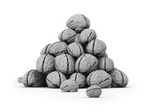 Dump of brains. The big dump of brains on the isolated white background Stock Photography