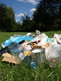 Dump in forest Royalty Free Stock Image