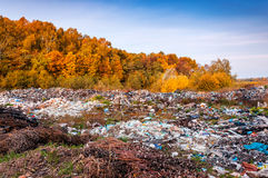Dump near autumn forest Stock Images