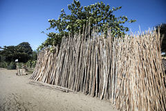 The dump treated wood for fencing Madagascar Royalty Free Stock Images