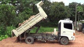 dump truck vídeos de arquivo