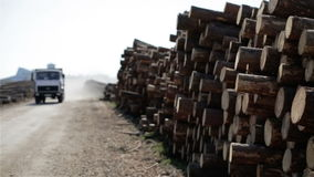 Dump and trucks are traveling on a dirt road along the stacked logs. stock video footage