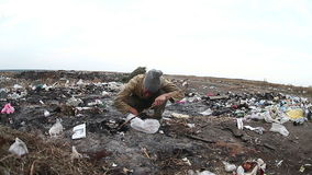 Dump unemployed homeless dirty looking food waste. Man in a landfill social  video stock footage