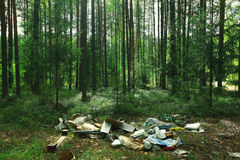Dump in the woods Royalty Free Stock Image