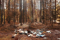 Dump in the woods Stock Image