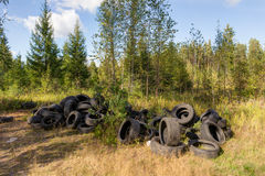 Dump in the woods Royalty Free Stock Photo