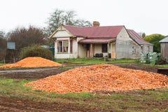 Dumped Carrot Crop Tasmania stock photo