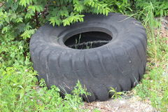 Dumped tire Stock Photo