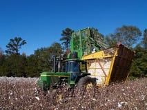 Dumping della raccoglitrice di cotone Fotografie Stock Libere da Diritti