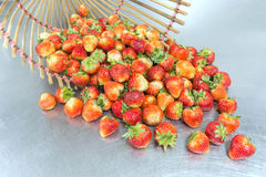 Dumping full fledged red strawberry Stock Photos
