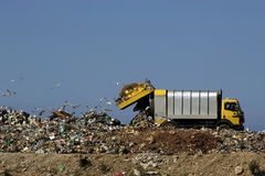 Free Dumping Trash Royalty Free Stock Photo - 5891725