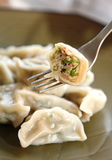 Dumpling. Chinese food, dumpling with meat and vegetable Royalty Free Stock Image