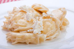 Dumpling with cottage cheese Royalty Free Stock Photos