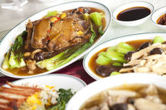 Dumpling duck Stock Images