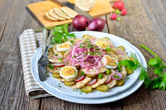 Dumpling salad. Bavarian dumpling salad, made of sliced bread dumplings, onion rings, radishes, spring onions, sliced eggs and gherkins, dressed with oil and royalty free stock photography