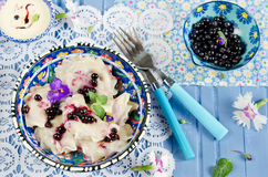 Dumplings with blueberries Stock Photo