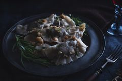 Dumplings with cabbage and mushrooms royalty free stock photos