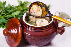 Dumplings in a ceramic pot. On a spoon Stock Photos