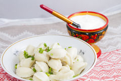 Dumplings in a dish Stock Photography