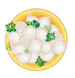 dumplings with greens on a plate and fork. Vector Stock Photo