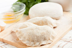 Dumplings homemade wholemeal. healthy Eating Royalty Free Stock Images
