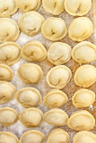 Dumplings on the kitchen board Royalty Free Stock Photo