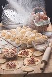 The dumplings made for cooki in style a rustic. The dumplings made for cooking, floured and dough with forcemeat on a table-top from an oak in style a rustic Royalty Free Stock Image