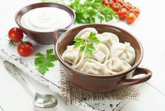 Dumplings with meat Royalty Free Stock Photos