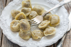 Dumplings with meat. Royalty Free Stock Image