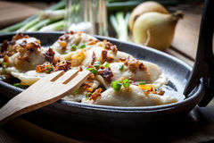Dumplings with meat, onion and bacon. Stock Photos