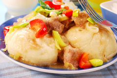 Dumplings with meat and vegetables Royalty Free Stock Photo