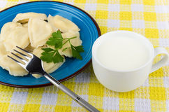Dumplings with parsley in blue glass plate and milk. Dumplings with parsley in blue glass plate and cup of milk on yellow tablecloth Stock Photography
