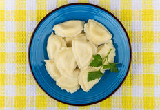 Dumplings with parsley in blue glass plate on yellow tablecloth Royalty Free Stock Photography