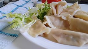 Dumplings on a plate falls eating, stock video footage