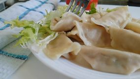 Dumplings, on a plate, fork stock footage