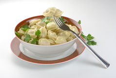 Dumplings. In a plate with a fork royalty free stock photo