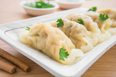 Dumplings on plate Stock Images