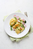 Dumplings with potato and salad stock image