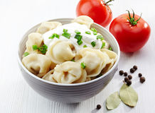 Dumplings russian pelmeni Royalty Free Stock Images