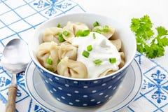Dumplings russian pelmeni Royalty Free Stock Photography