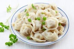 Dumplings russian pelmeni Royalty Free Stock Image