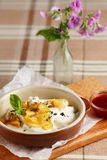 Dumplings with sour cream and baked apples Stock Photography