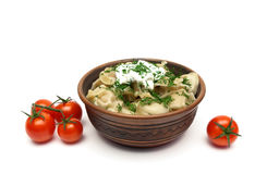 Dumplings with sour cream and cherry tomatoes on a white backgro Stock Images