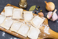 Dumplings square shape Royalty Free Stock Images