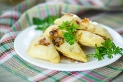 Dumplings stuffed with Royalty Free Stock Photography