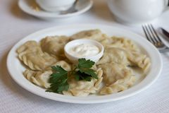 Dumplings in a white plate. Varenyky on a white plate on white table vareniki with sour cream stock photos
