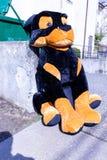 dumpter放弃的哀伤的被充塞的狗 库存照片